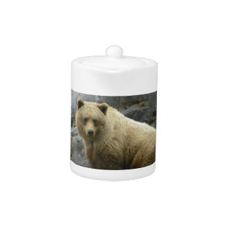 Naturaleza del destino de los animales de Alaska d