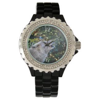 Naturaleza del lobo del grito y diseño árticos de reloj