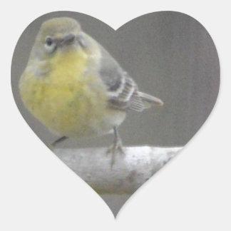 Naturaleza del pájaro de la curruca del pino pegatina en forma de corazón