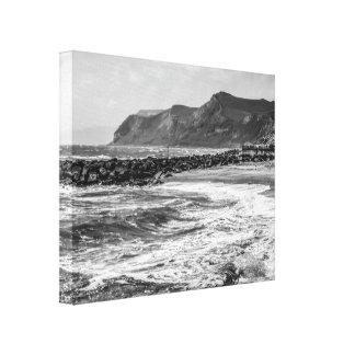 Naturaleza en blanco y negro lienzo envuelto para galerias