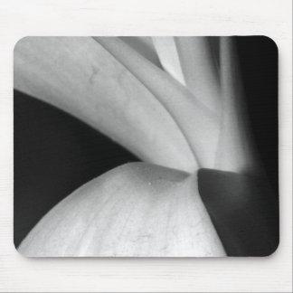 Naturaleza en blanco y negro tapete de ratón