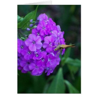 Naturaleza en el trabajo tarjeta de felicitación