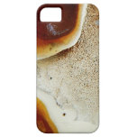 Naturaleza extraña - textura abstracta anaranjada iPhone 5 cárcasa