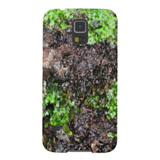 Naturaleza Fundas De Galaxy S5