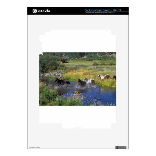 Naturaleza hermosa del destino del rancho del caba iPad 3 pegatina skin