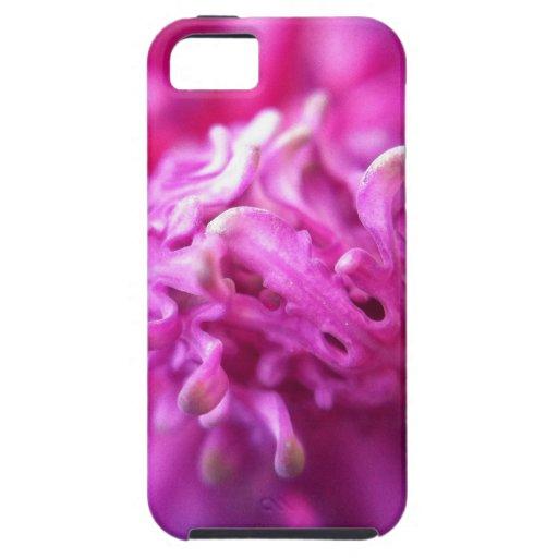 Naturaleza iPhone 5 Protector