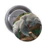Naturaleza linda Aussi del destino del oso de koal Pin