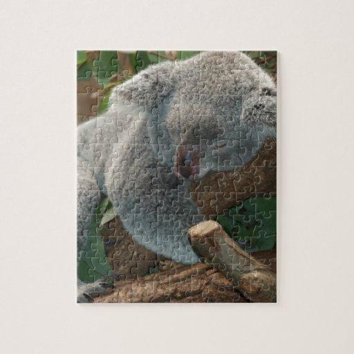 Naturaleza linda Aussi del destino del oso de koal Puzzle Con Fotos