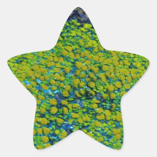 Naturaleza Pegatina En Forma De Estrella