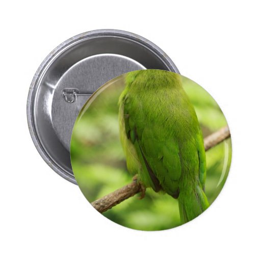 Naturaleza Pin Redondo 5 Cm
