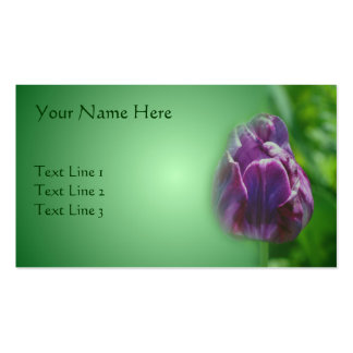 Naturaleza púrpura de la flor del tulipán tarjetas de visita