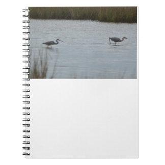 Naturaleza rojiza del agua del pájaro del Egret de Libro De Apuntes