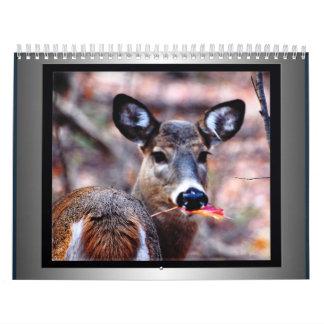 Naturaleza salvaje calendarios
