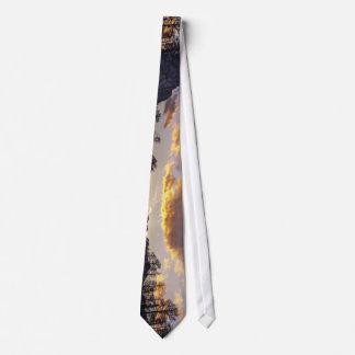 Naturaleza temática, un campo blanco prístino de corbatas personalizadas