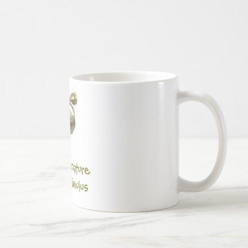 Naturaleza verdadera del estímulo tazas de café