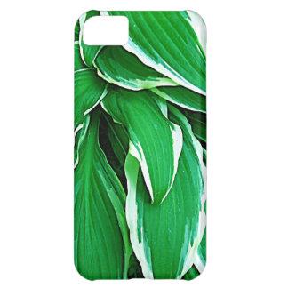 Naturaleza verde Fashi hermoso de Eco del Tress de Carcasa iPhone 5C