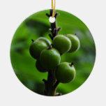 Naturaleza verde fresca adorno redondo de cerámica