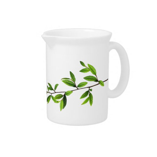 Naturaleza verde l ramita de hojas jarra para bebida