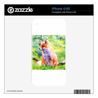 Naturaleza y Fox Calcomanías Para iPhone 4