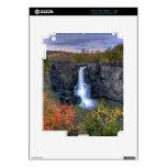 Naturalezas mágicas iPad 2 calcomanías