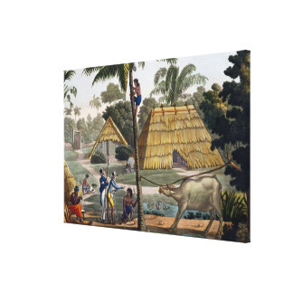 Naturalists question natives near Kupang, Timor, p Canvas Print