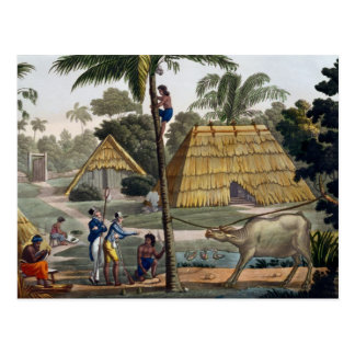 Naturalists question natives near Kupang, Timor, p Postcard
