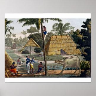 Naturalists question natives near Kupang, Timor, p Poster
