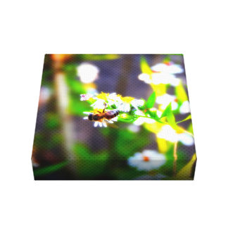 Naturalized American Honey Bee Canvas Print