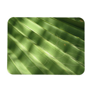 Naturally Cool Surfaces_Fluted Frond Rectangular Photo Magnet