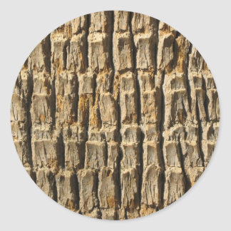 Naturally Cool Surfaces_Palm Tree Bark Classic Round Sticker