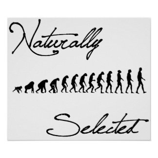 Naturally Selected Evolution Shirt Poster