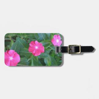 Nature 101 bag tags