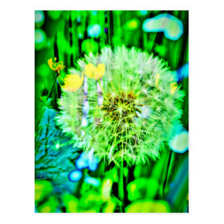 Nature abstractly breath flower postcard