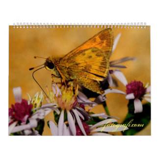 Nature and Scenery Calendar