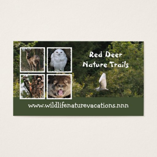 Nature and wildlife business card