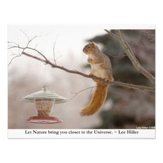 Nature Animal Photography Gifts Tees Collectibles Personalized Announcements
