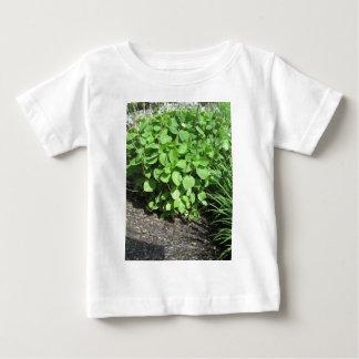 Nature Art Green Landscape CherryHill NVN677 GIFTS Baby T-Shirt