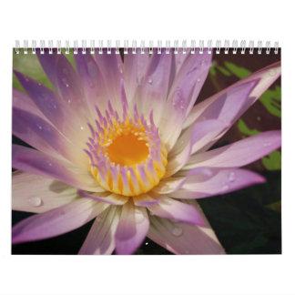 Nature at Its Best Calendar