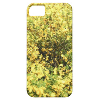 NATURE AT THE BEGINNG OF AUTUMN iPhone SE/5/5s CASE