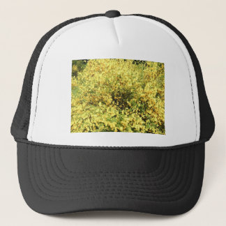 NATURE AT THE BEGINNG OF AUTUMN TRUCKER HAT