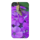 Nature At Work Cases For iPhone 5