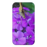 Nature At Work iPhone 4/4S Cases