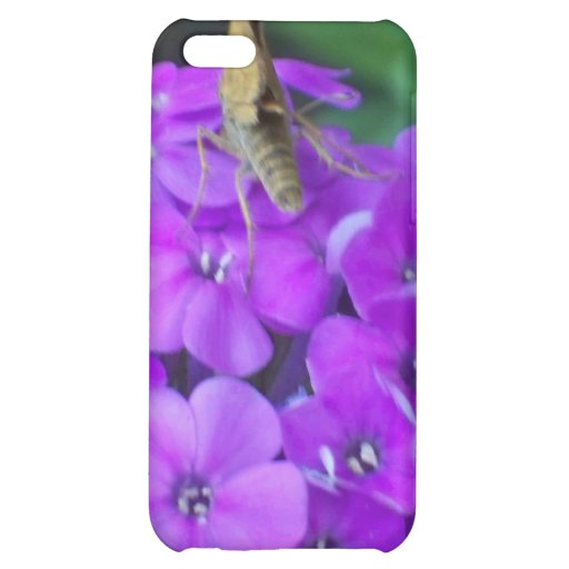 Nature At Work iPhone 5C Cases