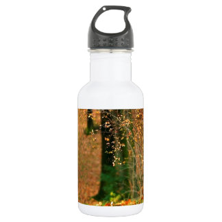 Nature Autumn Into The Woods 18oz Water Bottle