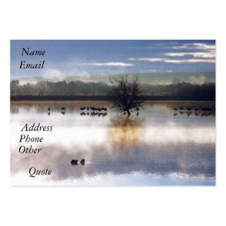 Nature Birds Business Card