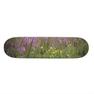 Nature Board