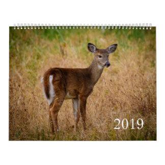 Nature Calendar 2019