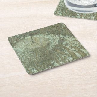 Nature Camouflage Oak Trees Tree Eye Bark Camo Square Paper Coaster