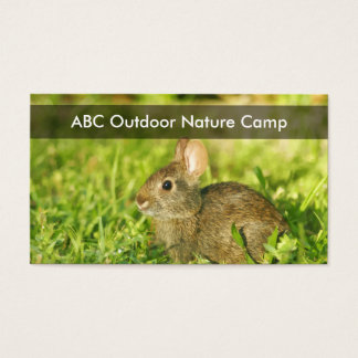 Nature Camp Business Cards