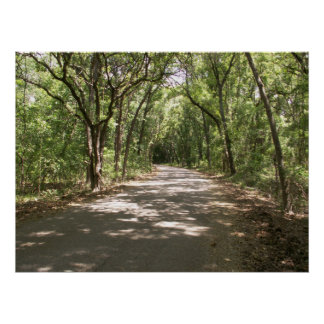 Nature Center main path Posters